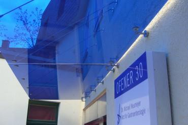 blaues Glas für Panther No. 1 Vordach