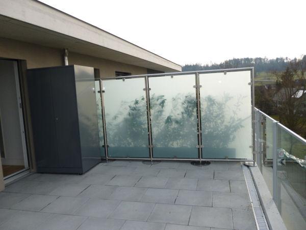 Glaswindschutz Panther Glas